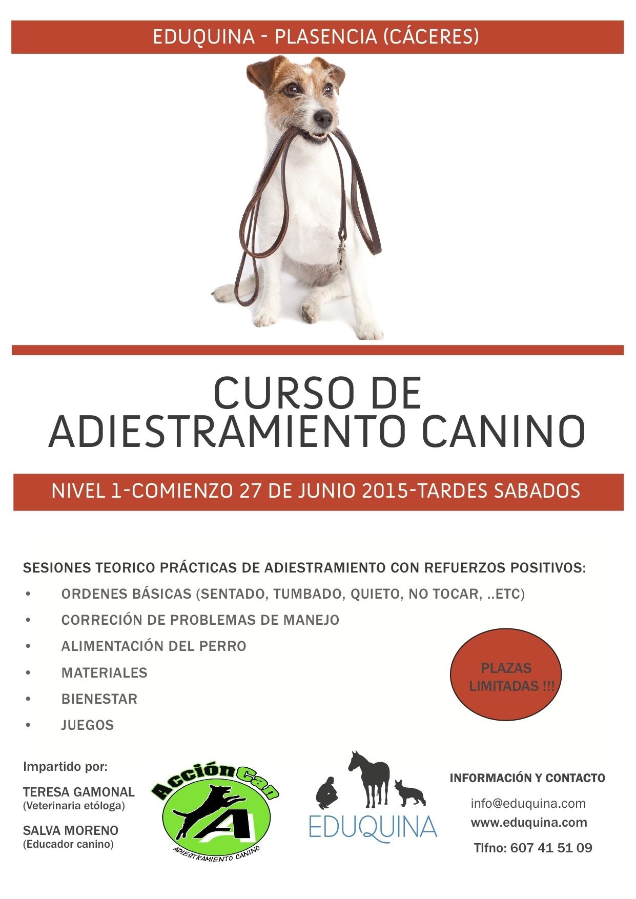 Curso de Adiestramiento Canino (Nivel1)