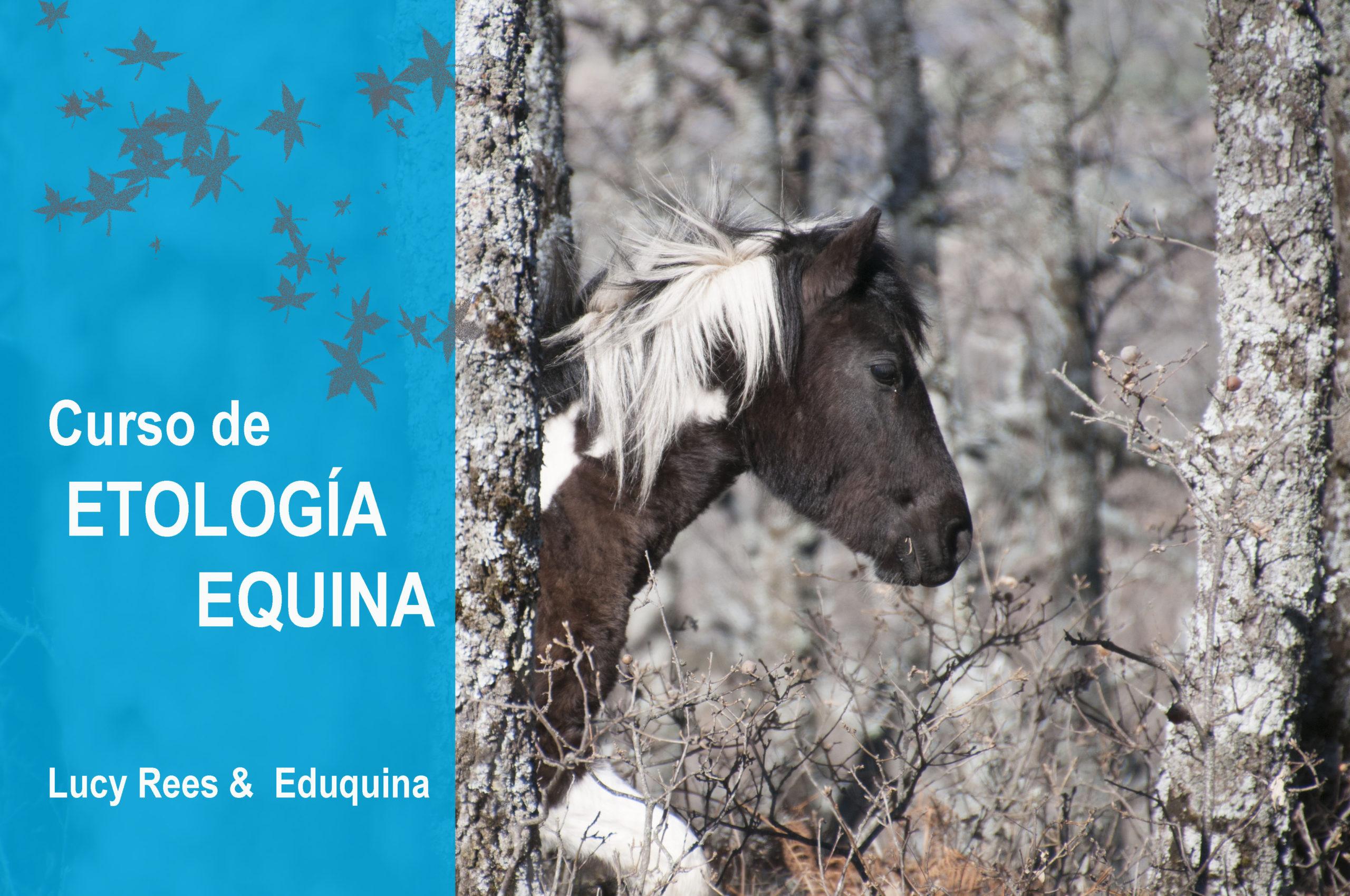 Bloque 1: Etología Equina.