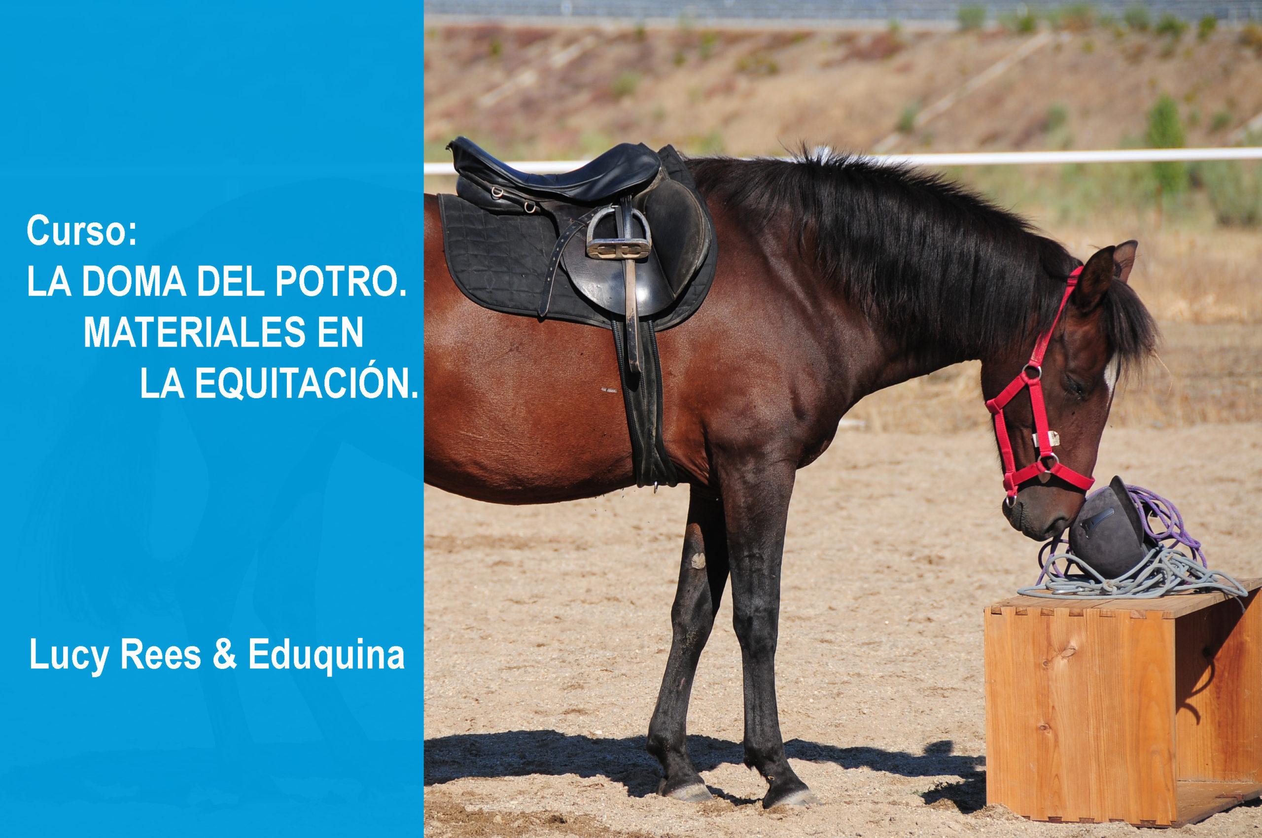 Bloque 4 (18 y 19 de marzo) La doma del potro/ Materiales en la equitación.