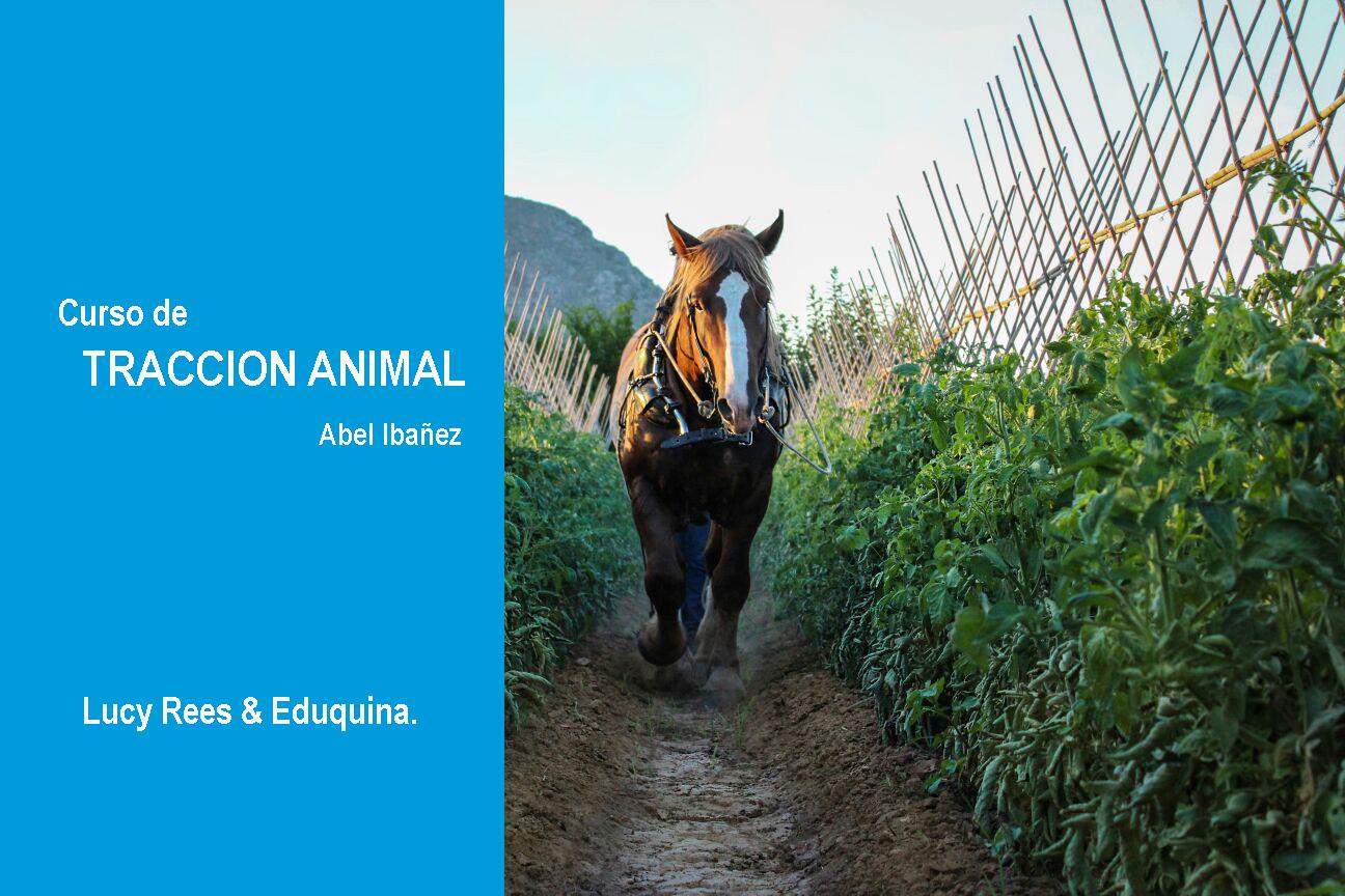 Bloque 5 (24 y 25 de Marzo): Tracción Animal