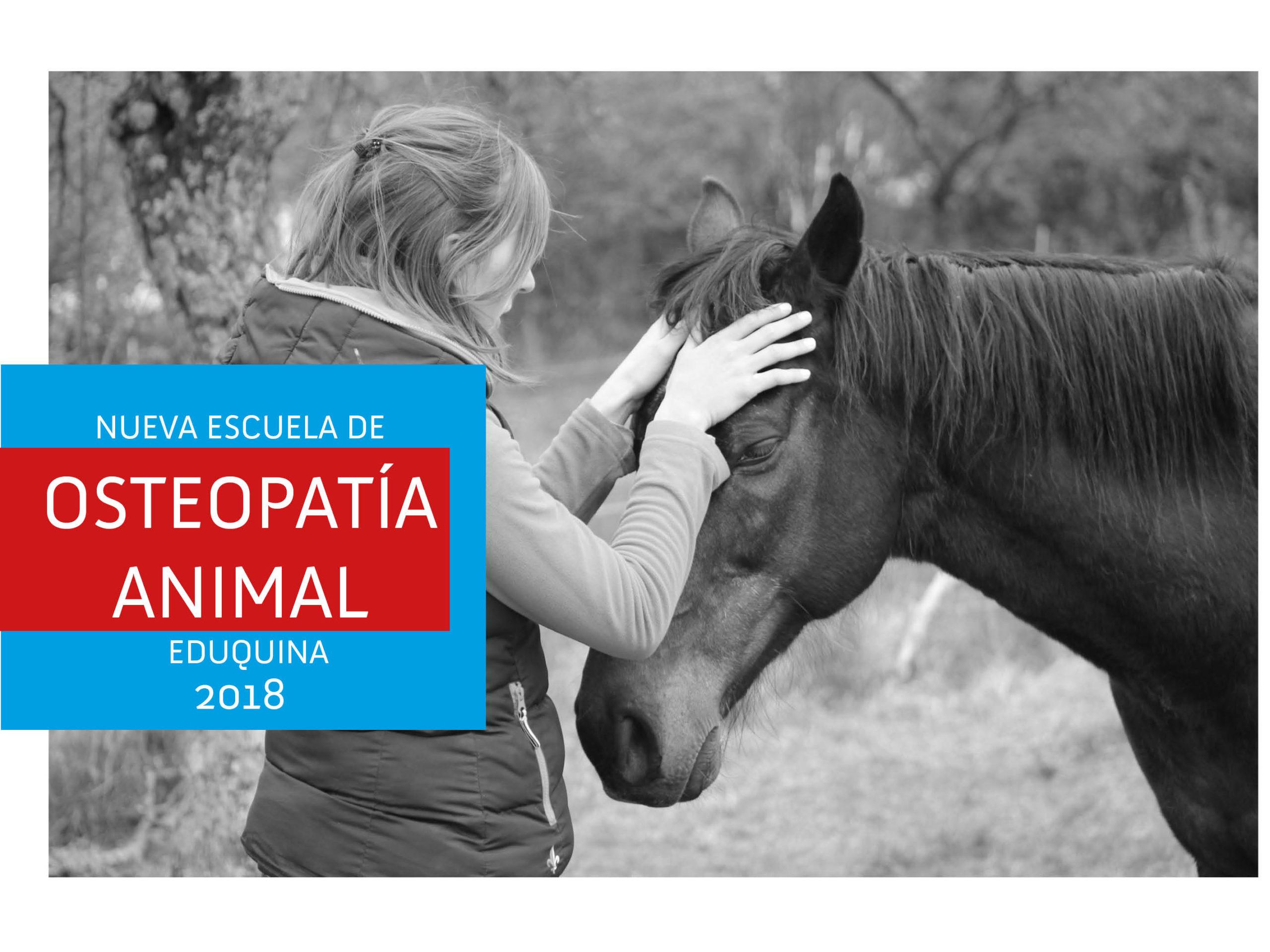 Nueva escuela de OSTEOPATIA EQUINA Y CANINA 2018
