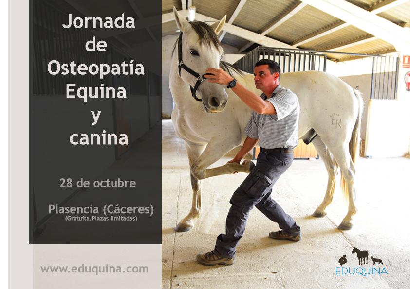 Jornada de puertas abiertas: Osteopatía Equina y canina (28 de octubre).