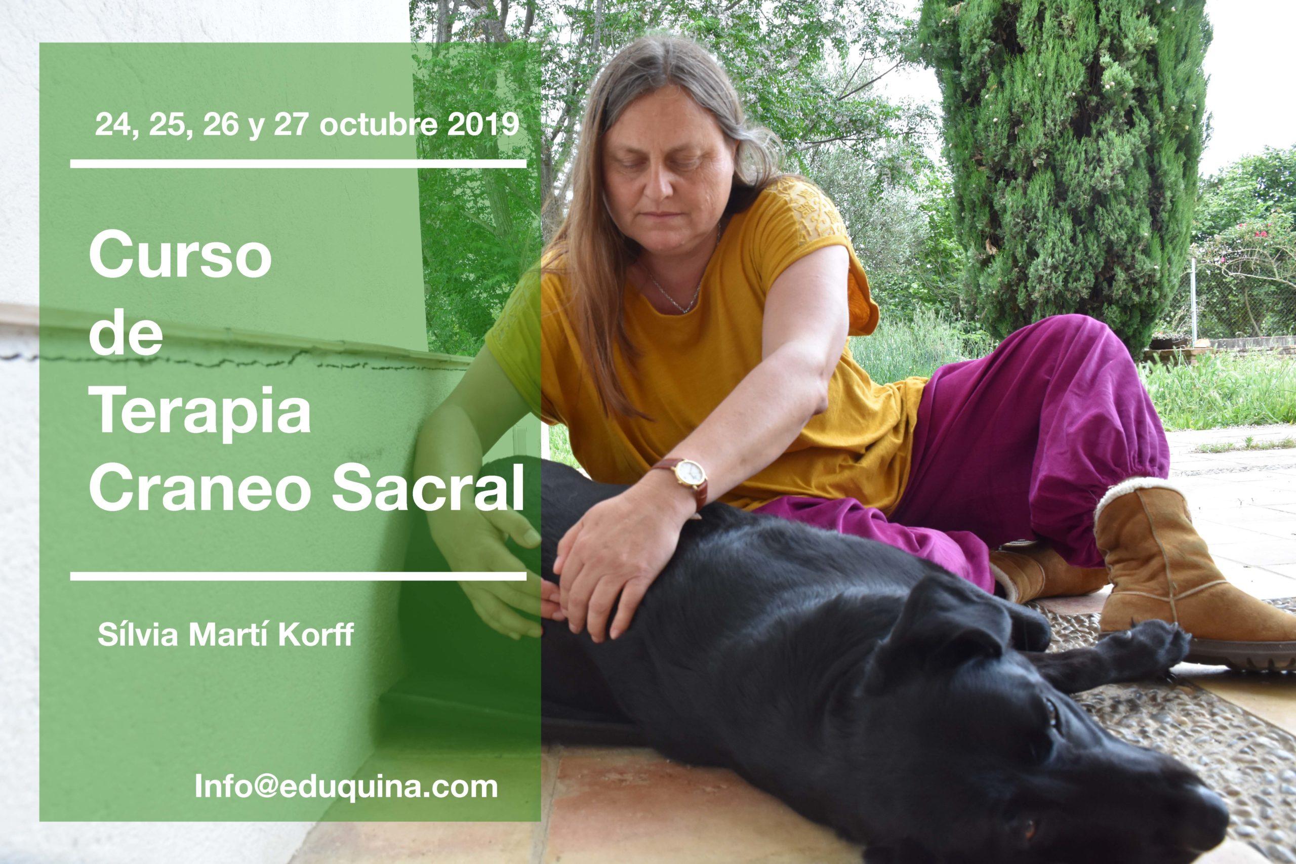 Curso de Terapias Craneo Sacral Equina y Canina con Silvia Marti.