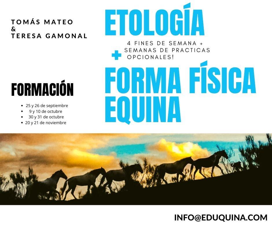 Formación ETOLOGIA + FORMA FÍSICA EQUINA